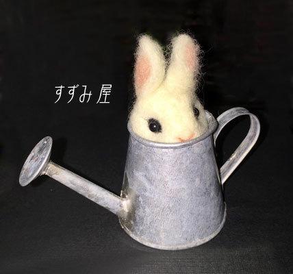 suzumiya2.jpg